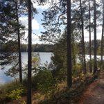 Студиска посета во Финска